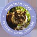 World POG Federation (WPF) > Exxon 09-Sumatran-Tiger---Panthera-tigris-Sumatrae.