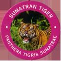 World POG Federation (WPF) > Exxon 10-Sumatran-Tiger---Panthera-tigris-Sumatrae.
