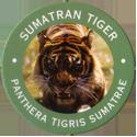 World POG Federation (WPF) > Exxon 12-Sumatran-Tiger---Panthera-tigris-Sumatrae.