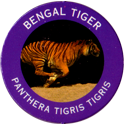 World POG Federation (WPF) > Exxon 13-Bengal-Tiger---Panthera-tigris-tigris.