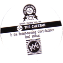 World POG Federation (WPF) > Holiday Inn Wild Collection 03-The-Cheetah-(back).