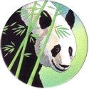 World POG Federation (WPF) > Holiday Inn Wild Collection 05-The-Giant-Panda-(front).