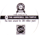 World POG Federation (WPF) > Holiday Inn Wild Collection 06-The-Hawksbill-Sea-Turtle-(back).