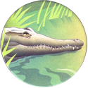 World POG Federation (WPF) > Holiday Inn Wild Collection 09-The-Orinoco-Crocodile-(front).