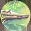 World POG Federation (WPF) > Holiday Inn Wild Collection 09-The-Orinoco-Crocodile-(front).