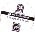 World POG Federation (WPF) > Holiday Inn Wild Collection 11-The-Siberian-Tiger-(back).